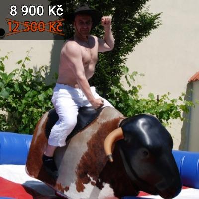 Elektrický býk